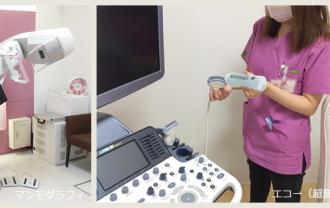 検診の流れ(乳腺科)