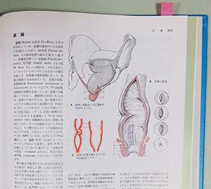 textbookA