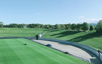 dome-field