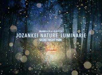 nature_luminarie